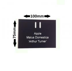 Engraved Adjustable Tree Label