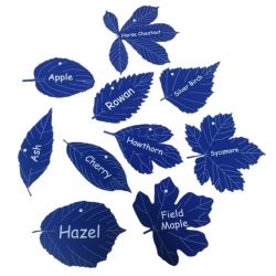 Multi Pack Engraved Leaf Labels