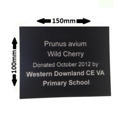 Engraved Plant Label