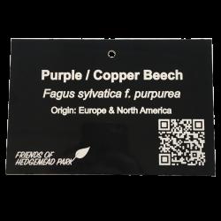 Engraved Metal Tree Label