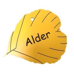 Engraved Alder Leaf Label