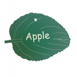 Engraved Apple Leaf Label