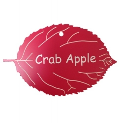 Engraved Crab Apple Leaf Label