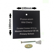 100 x 100mm Engraved Tree Label