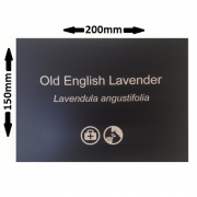 200 x 150mm Engraved Plant Label