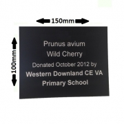 150 x 100mm Engraved Plant Label