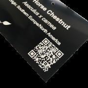 Engraved QR Code