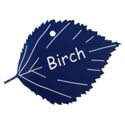 Engraved Birch Leaf Label