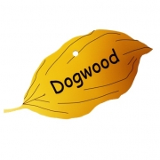 Engraved Dogwood Tree Leaf Label