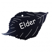 Engraved Elder Leaf Label