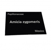 Engraved Black Aluminium Plant Label