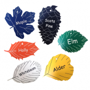 Engraved Leaf Shaped Labels, Multi-Pack