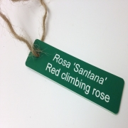 Engraved Plant Tag with Garden Twine