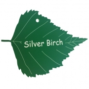 Engraved Silver Birch Leaf Label